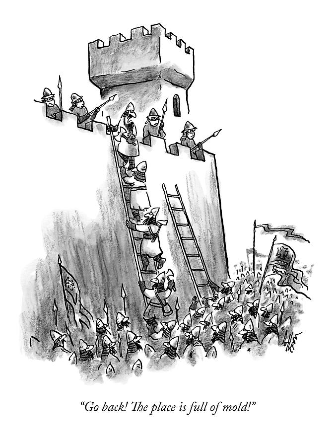 A Medieval Soldier Climbing A Ladder To The Top Drawing by Frank Cotham
