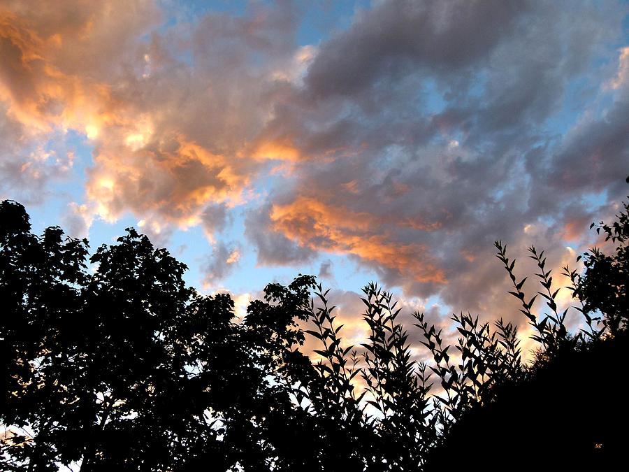 Summer Photograph - A Memorable Sky by Will Borden