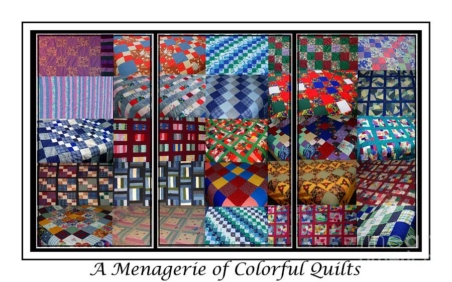 Quilts Tapestry - Textile - A Menagerie Of Colorful Quilts Triptych by Barbara Griffin