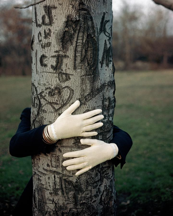 A Model Hugging A Tree Photograph by Frances Mclaughlin-Gill
