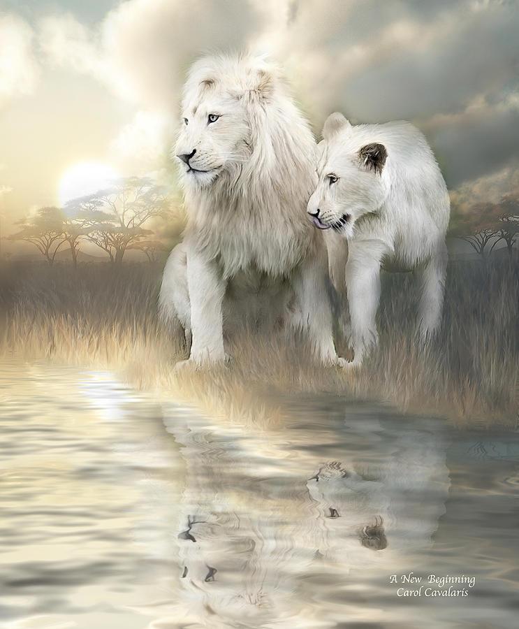 Lion Mixed Media - A New Beginning by Carol Cavalaris