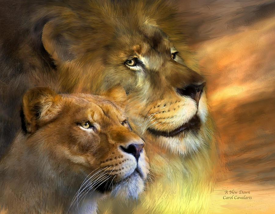Lion Mixed Media - A New Dawn by Carol Cavalaris