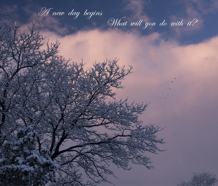 Birds Photograph - A New Day Begins by Mike  Bennett