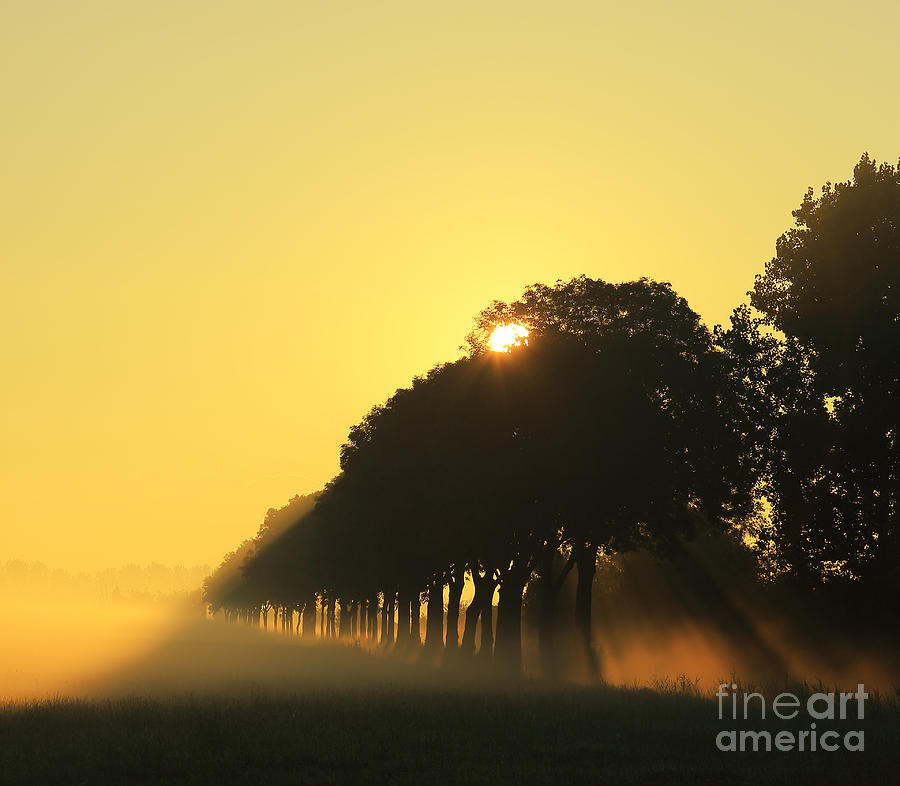Sunrise Photograph - A New Day by LHJB Photography