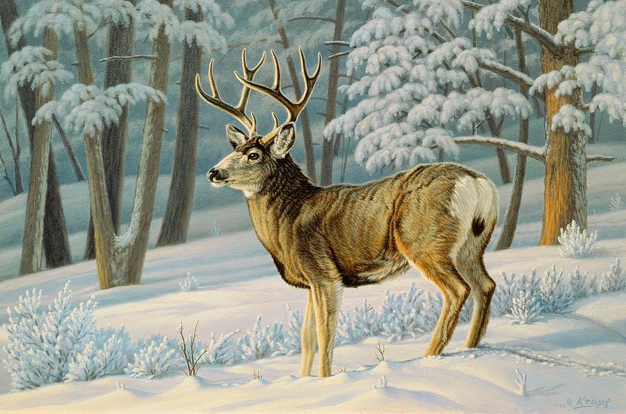 Wildlife Painting - A Nice Buck by Paul Krapf