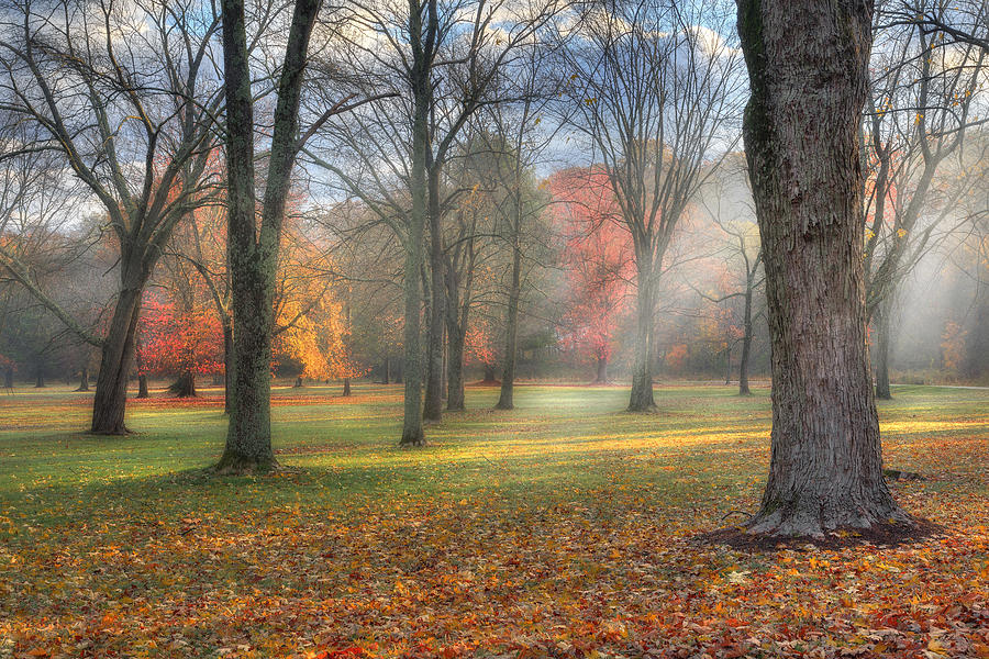 Sun Rays Photograph - A November Morning by Bill Wakeley