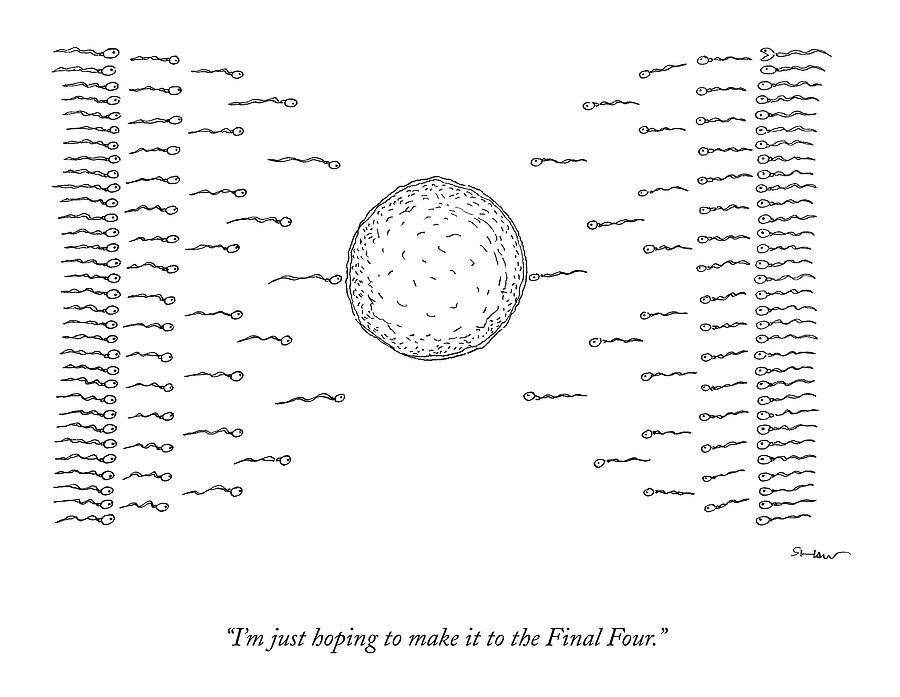 March Madness Drawing - A Number Of Sperms Approach An Egg In The Shape by Michael Shaw