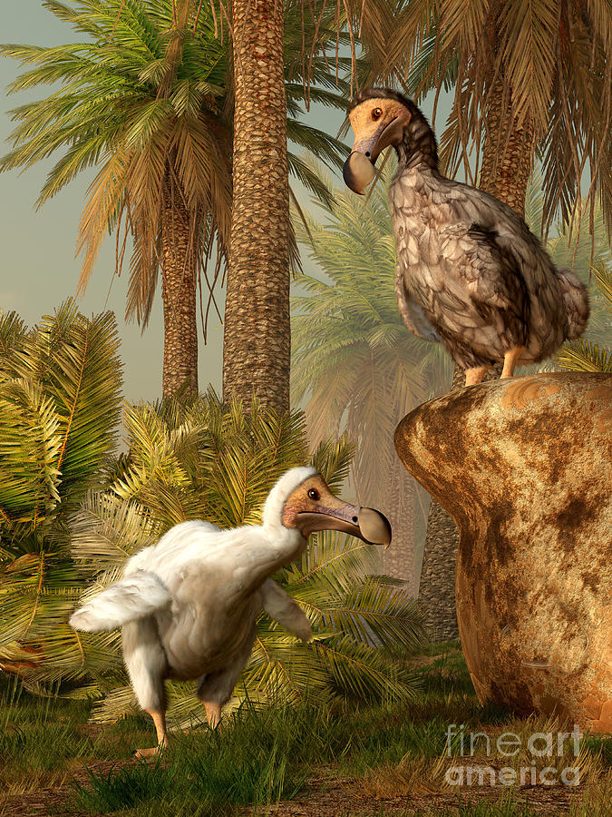 Outdoors Digital Art - A Pair Of Dodo Birds Play A Game by Daniel Eskridge