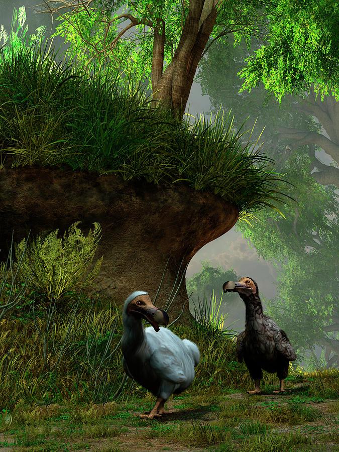 Prehistoric Era Digital Art - A Pair Of Dodo Birds Waddle Along A by Daniel Eskridge/stocktrek Images