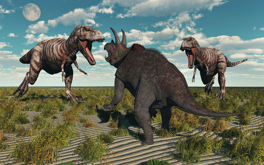 A Pair Of T Rex Dinosaurs Attacking Photograph By Mark Stevenson