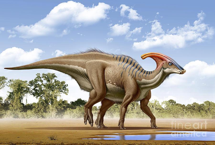 Image result for Parasaurolophus
