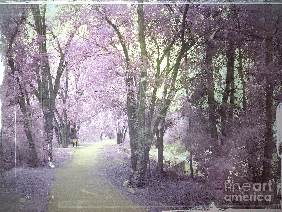 Trees Photograph - A Pastel Past by Tara Turner