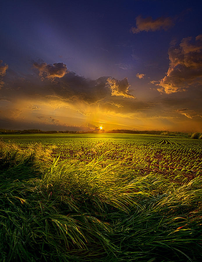A Peaceful Easy Feeling Photograph By Phil Koch