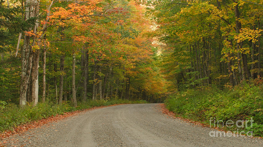Peaceful Photograph - A Peaceful Road by Charles Kozierok