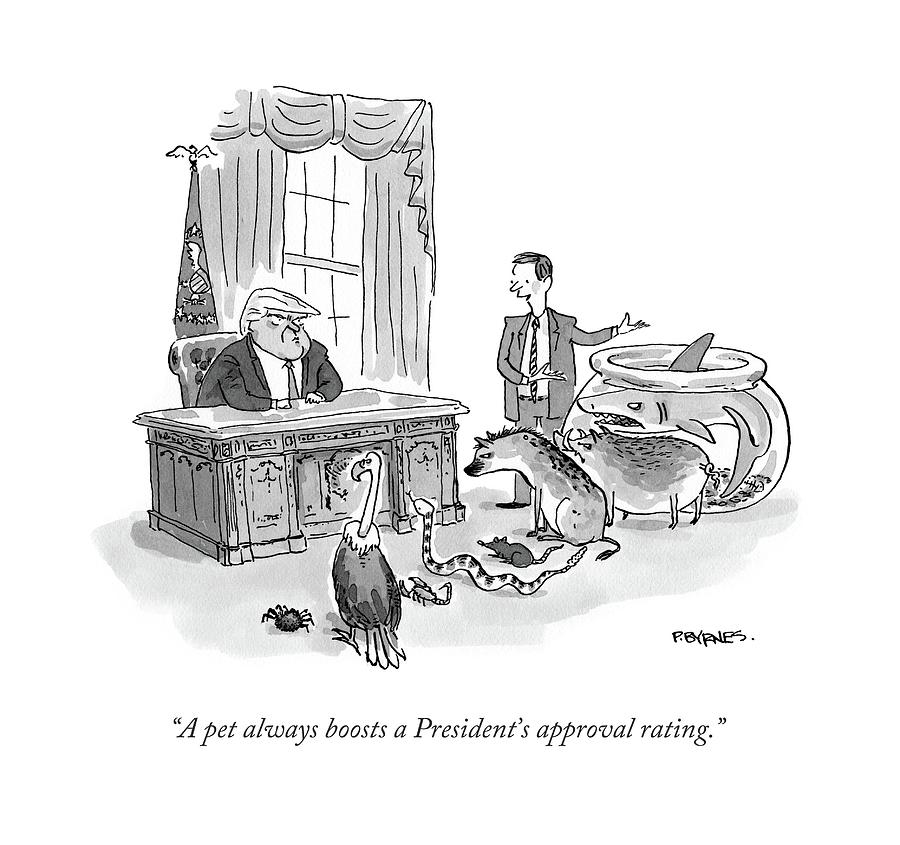A Pet Always Boosts A Presidents Approval Rating Drawing by Pat Byrnes