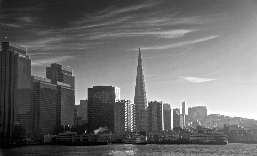 San Francisco Photograph - A Place To Leave Your Heart by Eric Tressler