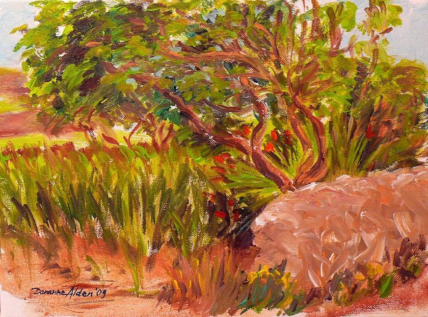 Landscape Painting - a pomergranate tree at Bummard - Malta by Doranne Alden