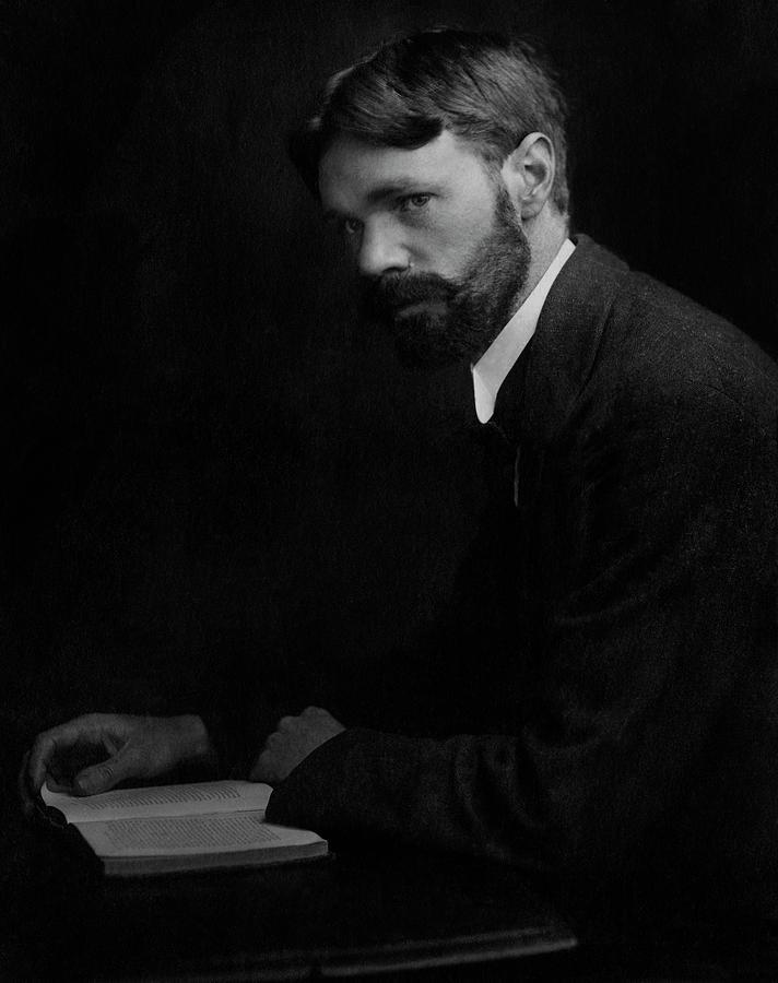 A Portrait Of D.h. Lawrence Photograph by Elliott & Fry