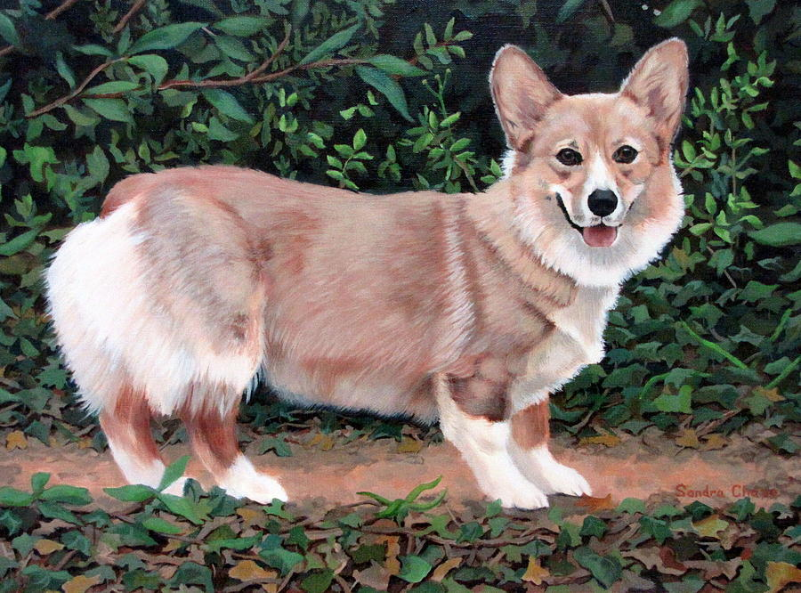 Dog Painting - A Portrait Of Pickle by Sandra Chase