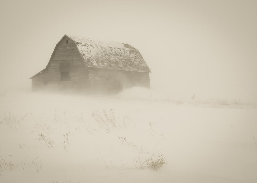 Landscape Photograph - A Prarie Winter by Gerald Murray Photography