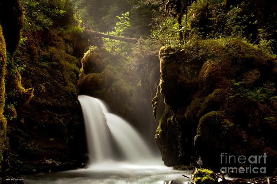 Alaska Photograph - A Ray Of Light by Chris Heitstuman