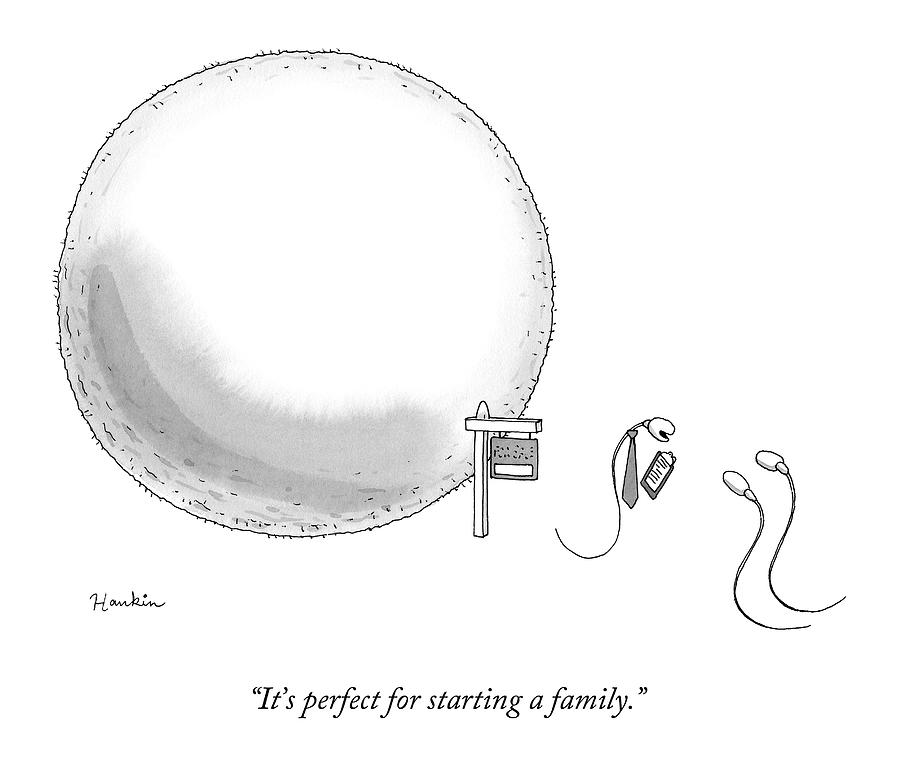 A Real-estate Sperm Selling A House Egg To Two Drawing by Charlie Hankin