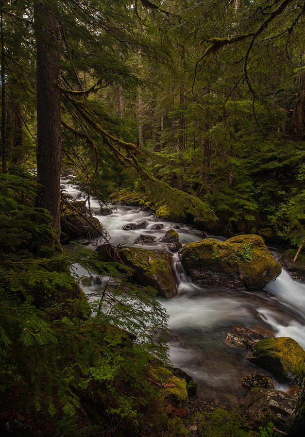 Northwest Photograph - A River Passes Through by Mike Reid