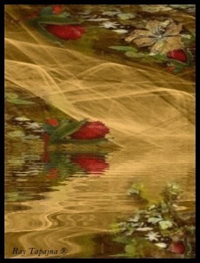 Rose Bud Mixed Media - A Rose Bud Stream by Ray Tapajna