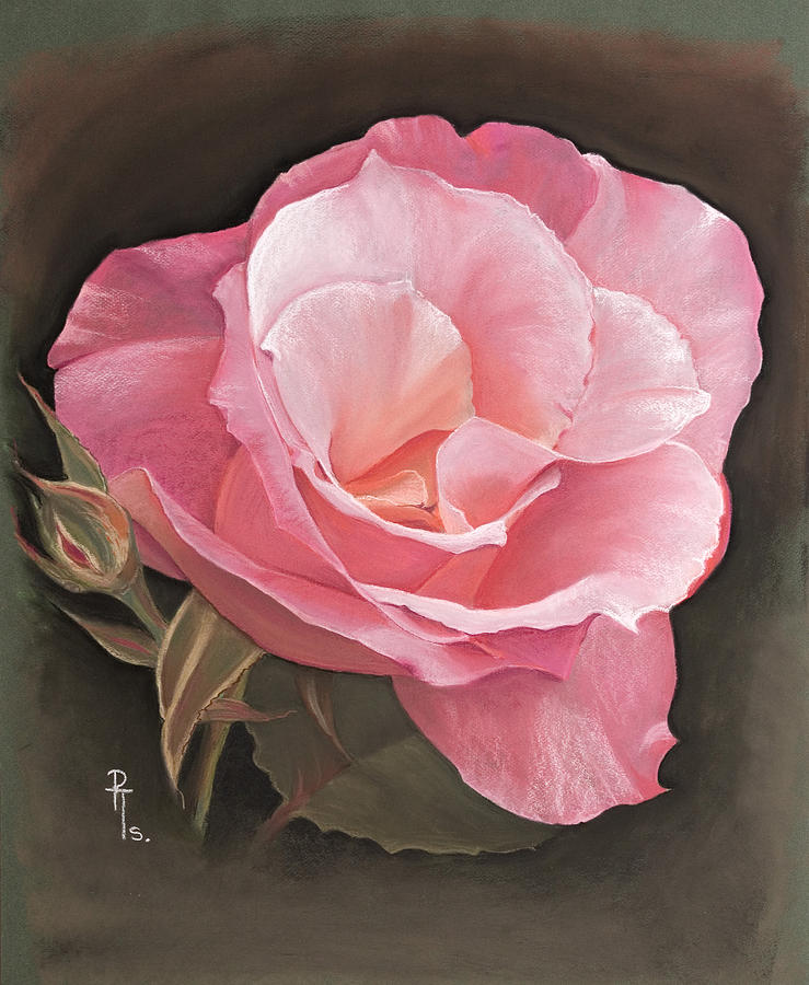 Rose Pastel - A Rose By Any Other Name.... by Rosemarie Temple-Smith