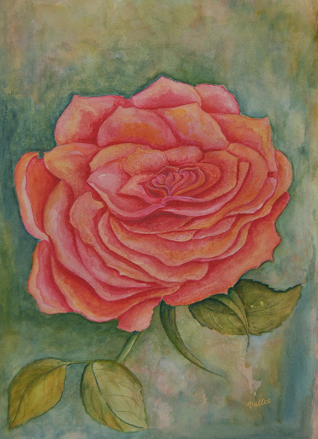 Rose Painting - A Rose Is A Rose by Vallee Johnson