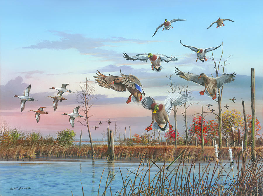 Mallards Painting - A Safe Return by Mike Brown