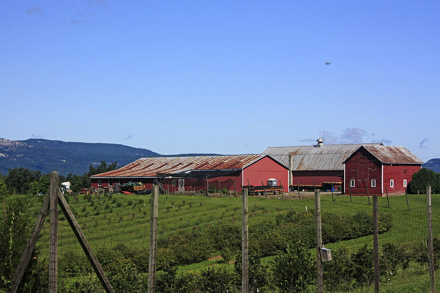A Scenic View Of A Farm With Mountains In The Background Photograph