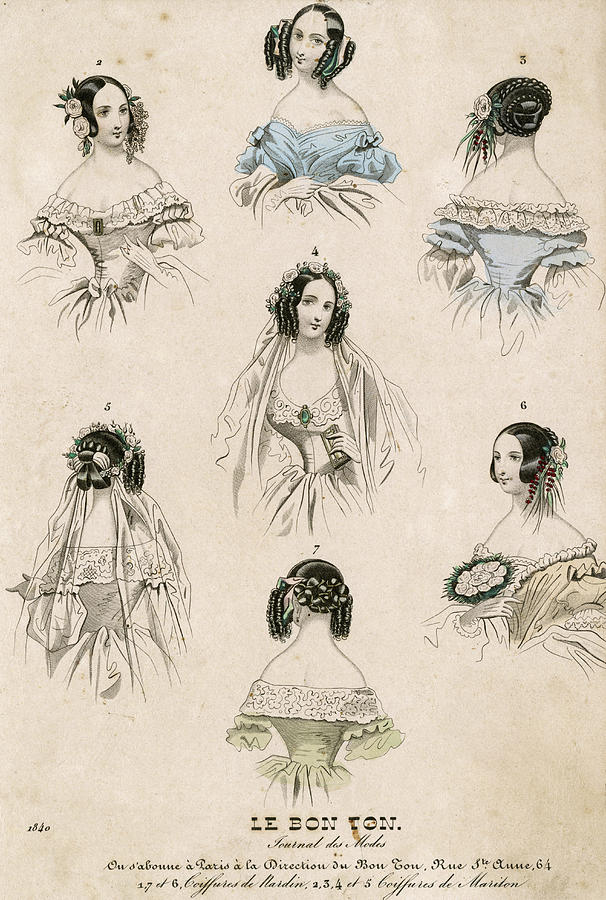 A Selection Of Women S Hairstyles Drawing By Mary Evans Picture