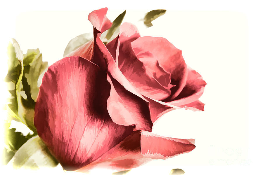 A Single Red Rose Flower Painting In Color 3187 02 Painting By M K
