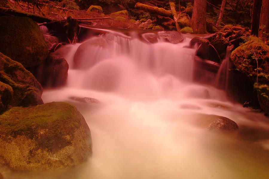 Waterfalls Photograph - A Small Waterfall Along The Old North Cascade Highway  by Jeff Swan