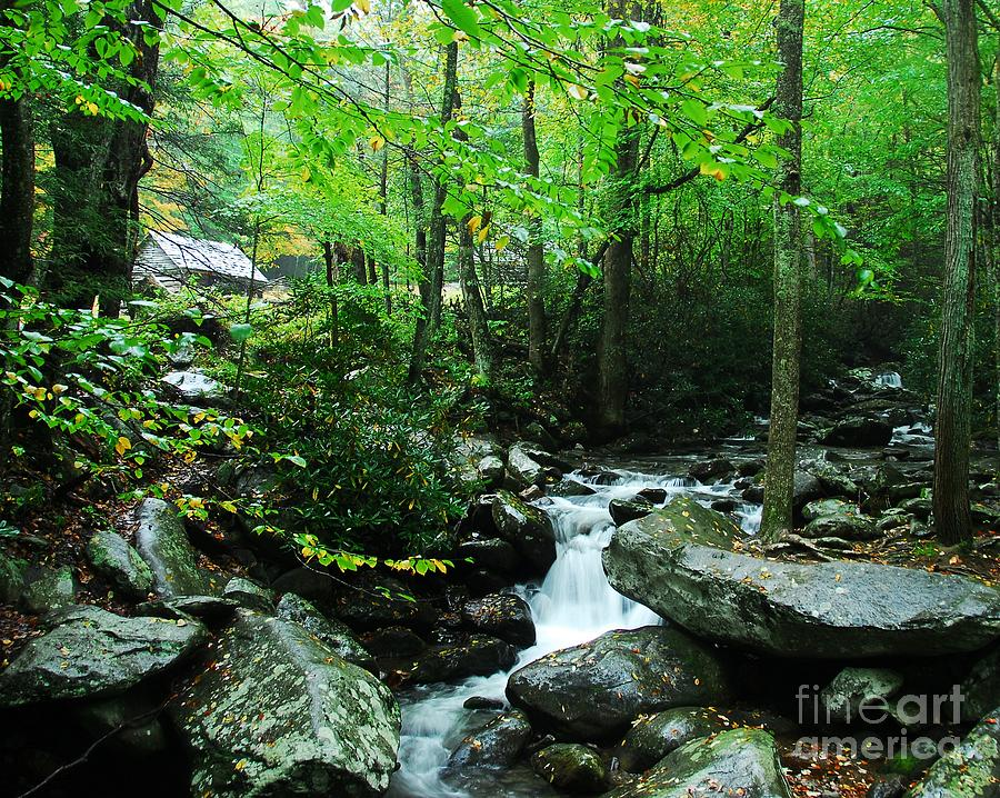 Great Smoky Mountains National Park Photograph - A Smoky Mountain Stream 2 by Mel Steinhauer