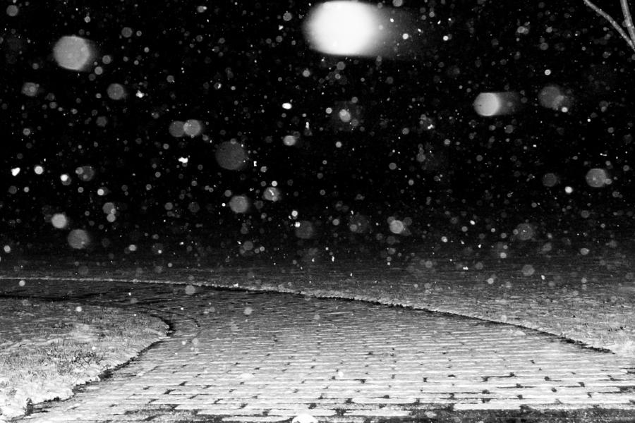 Snow Photograph - A Snowy Night by Hannah Miller