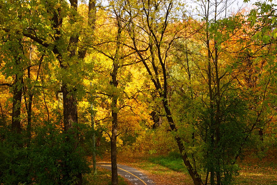 Road Photograph - A Special Road by Jocelyne Choquette