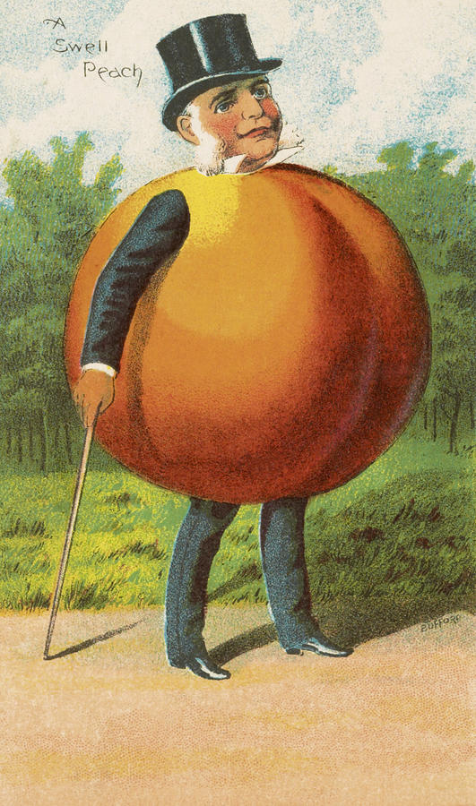 Vintage Drawing - A Swell Peach by Aged Pixel