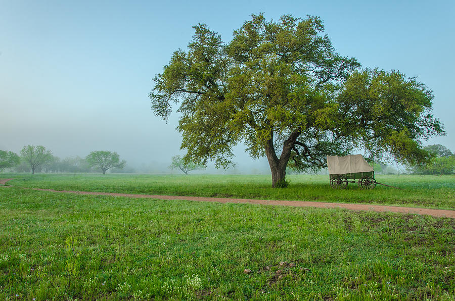 Llano Photograph - A Texas Morning by Jeffrey W Spencer
