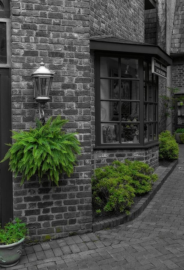 A Touch Of Green In The City Photograph - A Touch Of Green In The City by Dan Sproul