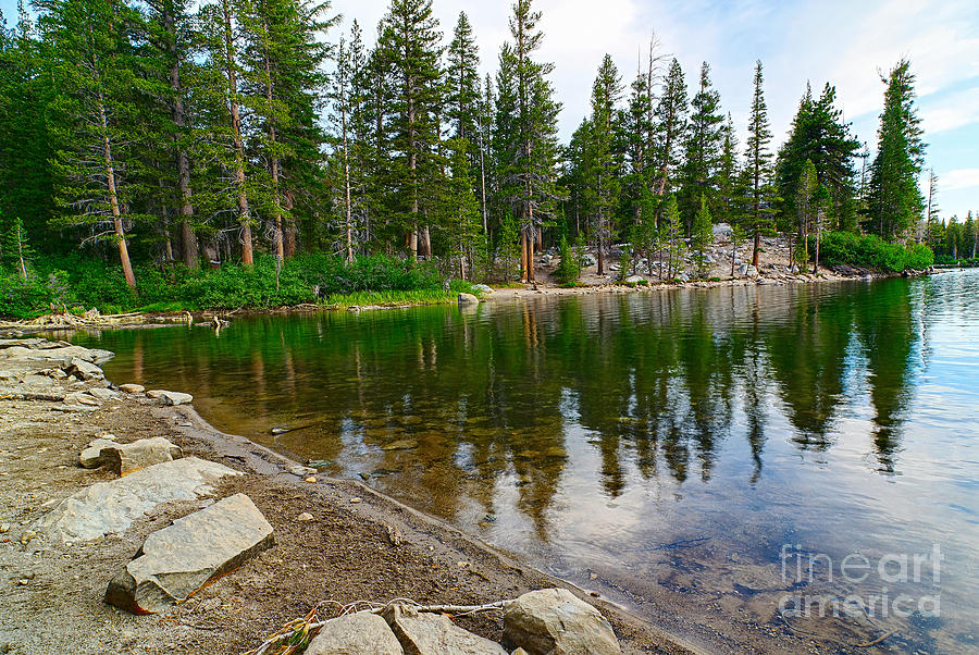 Tree Photograph - A Very Tranquil View Of Twin Lakes In Mammoth Lakes California by Jamie Pham