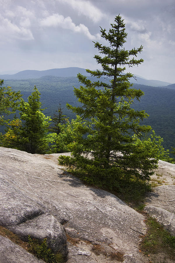 Landscape Photograph - A View From A Mountain In A Vermont State Park by Randall Nyhof