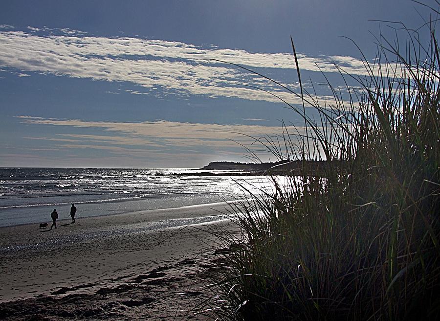 Nova Scotia Photograph - A Walk By The Sea by George Cousins