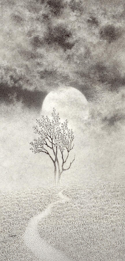 Mark Reep Drawing - A Walk In The Moonlight by Mark  Reep