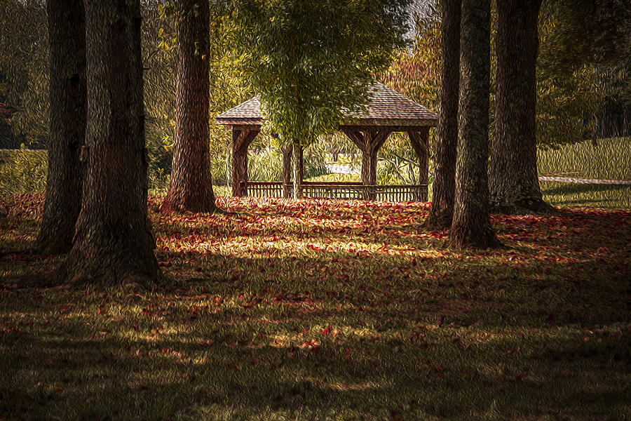 Fall Colors Photograph - A Walk In The Park by Cindy Rubin