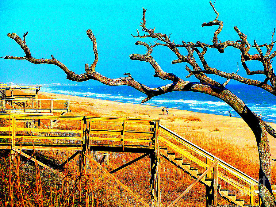 Carbo Photograph - A Walk On Atlantic Beach by Mj Carbo
