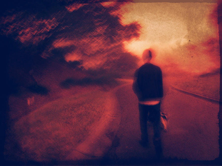 Modern Photograph - A Walk by Stephanie Selby