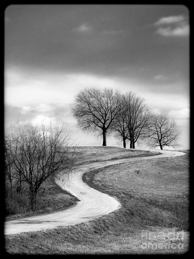 Winding country road photograph a winding country road in black and white by imagery by