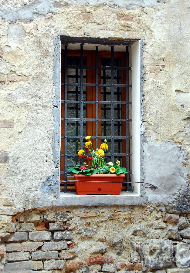 Italy Photograph - A Window In Tuscany by Mel Steinhauer